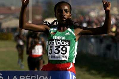 Tirunesh Dibaba wins the women's Long Race - St-Etienne/St-Galmier (Getty Images)