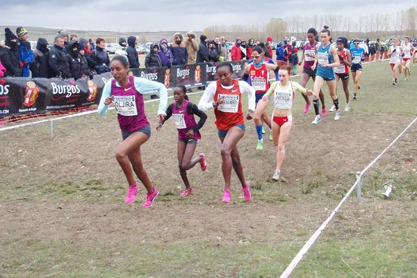 Belaynesh Oljira leads the women's race at the Cross Internacional de Atapuerca (Organisers)