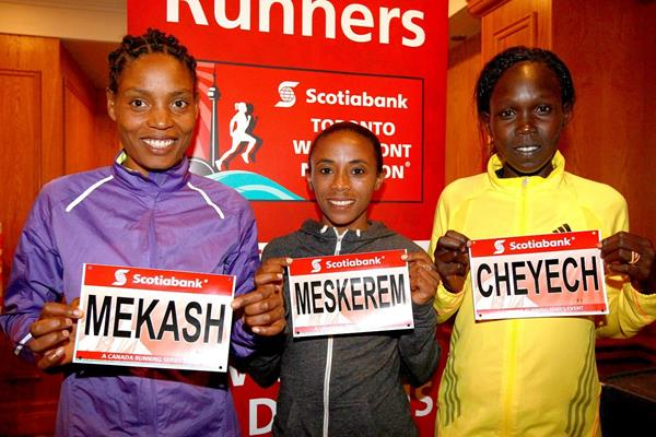 Dinknesh Mekash, Meskerem Assefa and Flomena Cheyech ahead of the 2013 Scotiabank Toronto Waterfront Marathon (Victha Sailer / organisers)