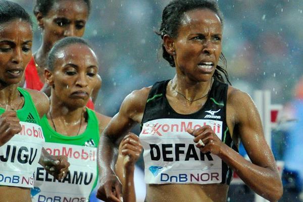 Meseret Defar, winner of the 5000m at the Oslo Diamond League (Hasse Sjogren)