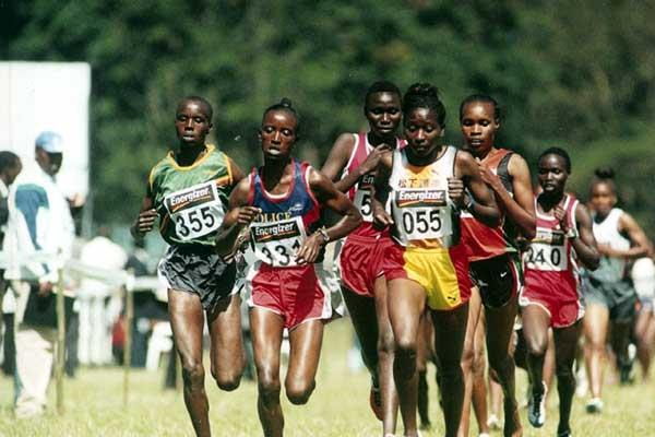 Women's 4km race at 2004 Kenyan XC champs (Masai, 355 extreme left; Beatrice Jepchumba (236) extreme right in the second row) (Njenga)