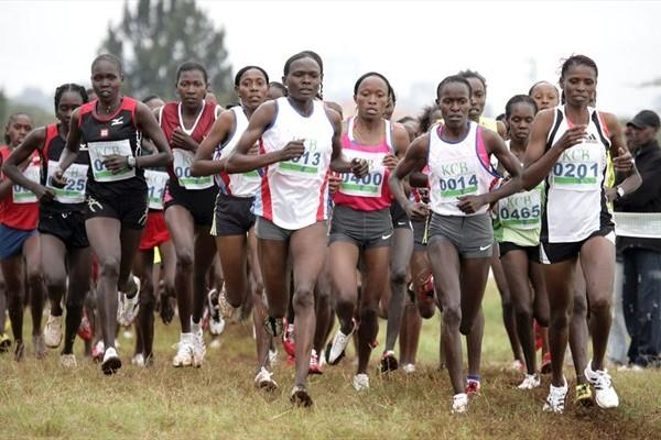 The field in the women's senior race at the Kenyan World cross national trials in Nairobi (Mohammed Amin/Daily Nation)