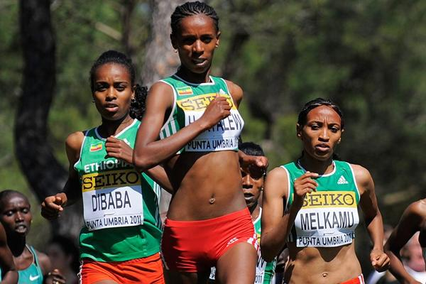 Ethiopia's Hiwot Ayalew leads the senior women's race at the 2011 World Cross Country Champions (Getty Images)
