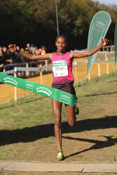 Hiwot Ayalew wins at the Cross Internacional de Italica (Alfambra Fundación ANOC)