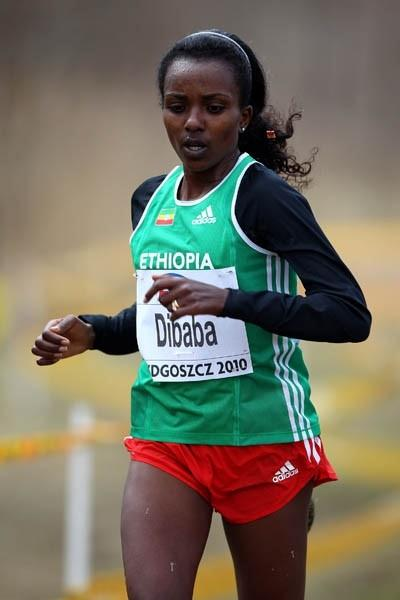 Tirunesh Dibaba in action at the IAAF World Cross Country Championships in Bydgoszcz (Getty Images)
