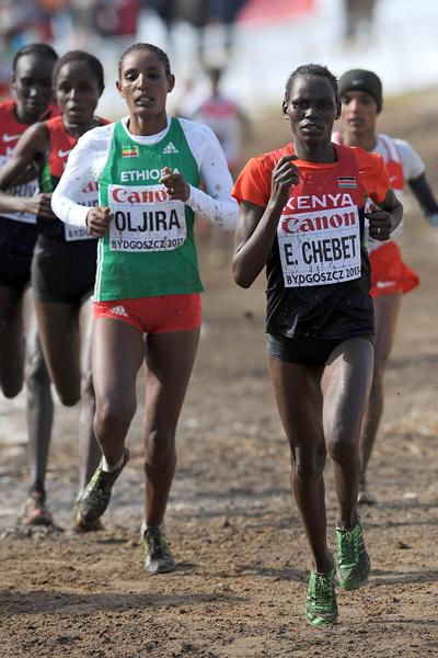 Emily Chebet of Kenya leads the senior women's race at the  2013 IAAF World Cross Country Championships, Bydgoszcz, Poland (Getty Images)