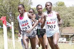 The women's field in the 8km race at the 2010 Kenyan Armed Forces Cross Country Championships at Kahawa, Nairobi. Innes Chenonges (right, 702) won the race. (Elias Makori)