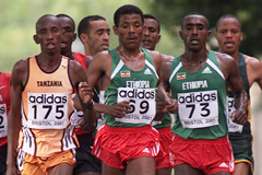The leading men's pack at the 2001 IAAF World Half Marathon Championships in Bristol (© Allsport)