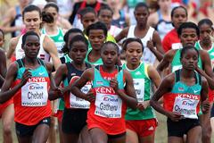 The senior women's race at the 2010 IAAF World Cross Country Championships in Bydgoszcz (Getty Images)