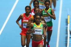 Genzebe Dibaba leads the 3000m at the 2014 IAAF World Indoor Championships in Sopot (Getty Images)
