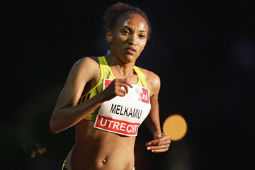 Meselech Melkamu en route to her 29:53.80 performance in Utrecht (AFP / Getty Images)