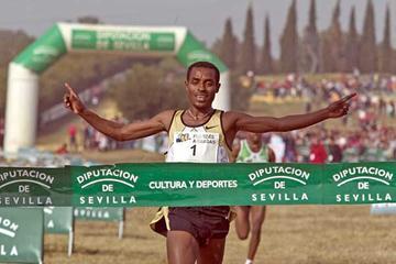 Kenenisa Bekele takes a comfortable victory at the XXV Croos Internacional de Itálica, Seville (Juan Rodelas Diaz)