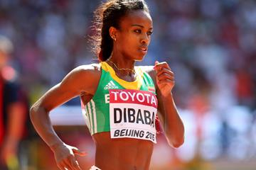 Genzebe Dibaba in the 5000m heats at the IAAF World Championships, Beijing 2015 (Getty Images)