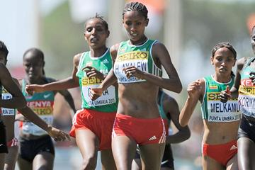 Hiwot Ayalew of Ethiopia in action at the 2011 World Cross Country Championships in Punta Umbria (Getty Images)