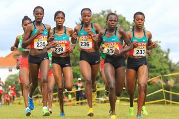 Kenya dominates the senior women's race at the 2014 African Cross Country Championships (Namayo Mawerere)