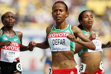 Meseret Defar wins the opening round heat of the women's 5000m at the 2011 World Championships in Daegu (Getty Images)