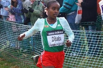 A familiar looking bib: Genzebe Dibaba - junior women's champion - Edinburgh 2008 (Getty Images)