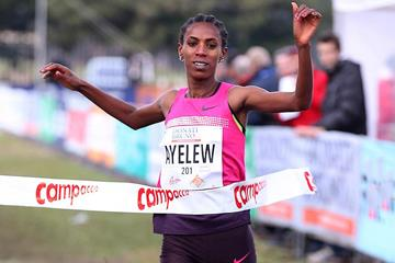 Hiwot Ayalew wins the women's race at Campaccio (Giancarlo Colombo)