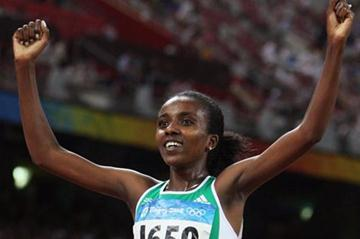 2008 double Olympic champion Tirunesh Dibaba (Getty Images)