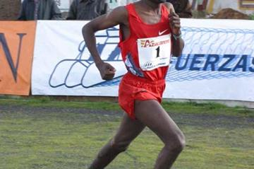 Sileshi Sihine winner of the Venta de Banos cross country (Jose Perez Gomez)