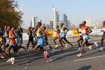 The lead pack at the Frankfurt Marathon (Photorun)
