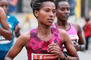 Tigist Tufa at the 2014 Ottawa Marathon (Organisers / Victah Sailor)