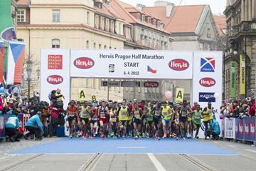 The start of the 2013 Prague Half Marathon (organisers)