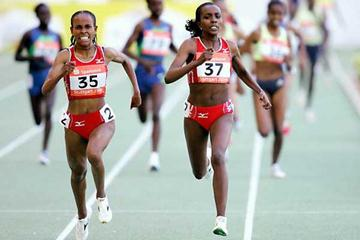 Defar (l) and Dibaba (r) duel in Stuttgart over 5000m (Getty Images)