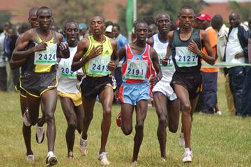Gideon Ngatunyi (2127) leading the pack at the Kenyan Cross Country Championships (Ricky Simms)