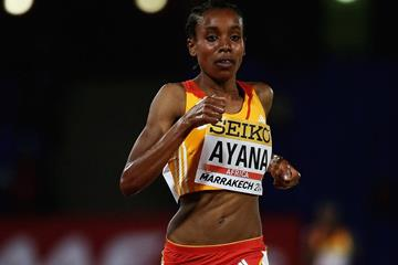 Almaz Ayana on her way to winning the 5000m at the IAAF Continental Cup, Marrakech 2014 (Getty Images)