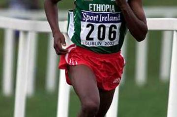 Bekele running at the 2002 World Cross Country Championships (Getty Images)
