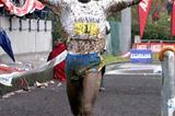 Tariku Bekele winning the 2005 Cross Internacional Valle de Llodio (Pedro Agustín)