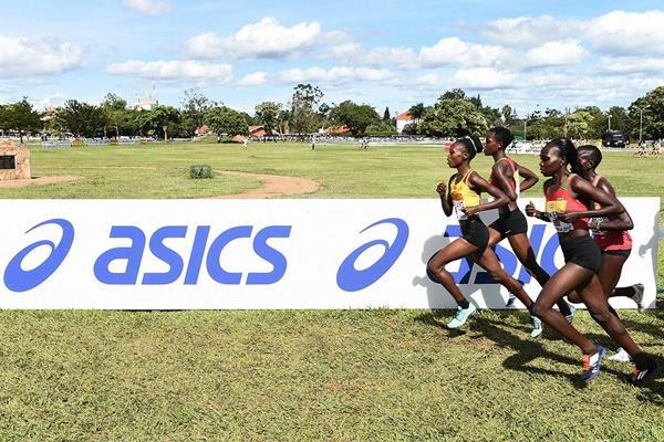 Runners in the U20 women's race at the IAAF World Cross Country Championships Kampala 2017 (Jiro Mochizuki)