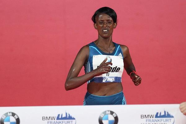 Aberu Kebede winning the 2014 BMW Frankfurt Marathon (organsers / Victah Sailer)
