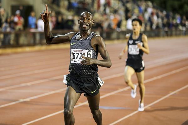 Bernard Lagat winning the 10,000m at the 2016 Payton Jordan Invitational (Spencer Allen/Image of Sport)