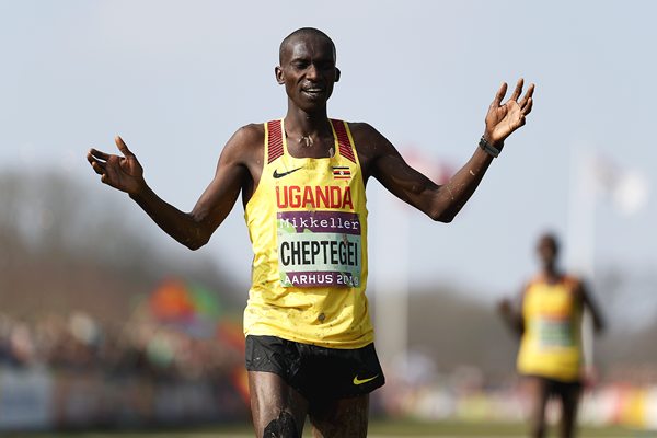 Joshua Cheptegei wins the senior men's race at the IAAF/Mikkeller World Cross Country Championships Aarhus 2019 (Getty Images)