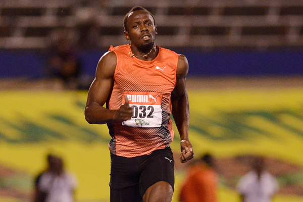 Usain Bolt in action in Kingston (AFP / Getty Images)