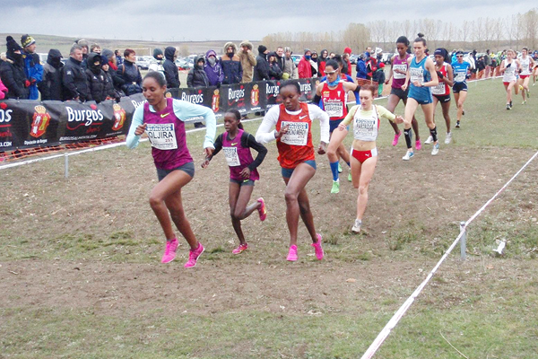 Belaynesh Oljira leads the women's race at the Cross Internacional de Atapuerca (Organisers)