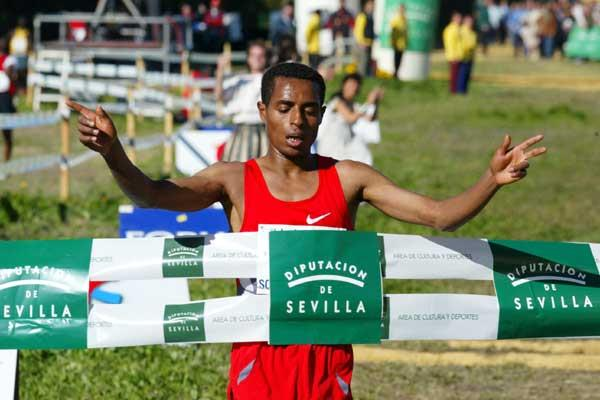 Bekele wins in Seville - 'XXII Cross Internacional de Itálica (Rodelas D)