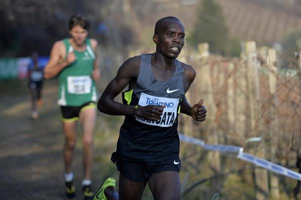 Andrew Kwemoi Mangata on his way to winning at the 2015 Cross di Villa Lagarina (Organisers)