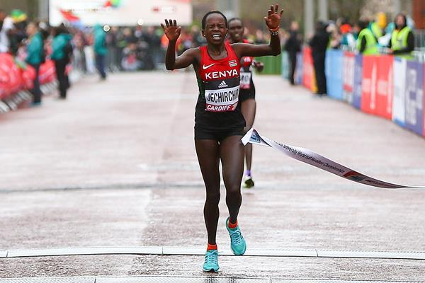 Peres Jepchirchir wins the women's race at the World Half Marathon Championships Cardiff 2016 (Getty Images)