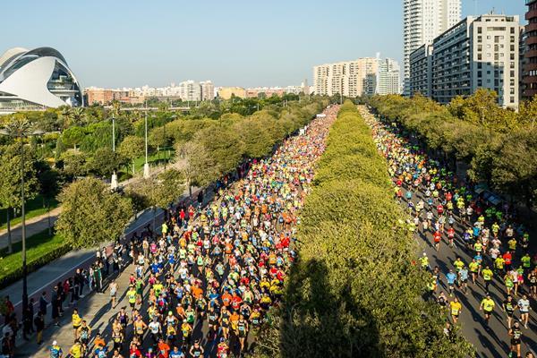 Marathon runners in action (Organisers)