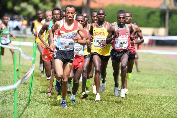 Yemane Haileselassie of Eritrea in the U20 men's race at the IAAF World Cross Country Championships Kampala 2017 (Jiro Mochizuki)