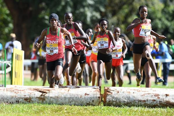 Kenyan women in action at the IAAF World Cross Country Championships Kampala 2017 (Jiro Mochizuki)