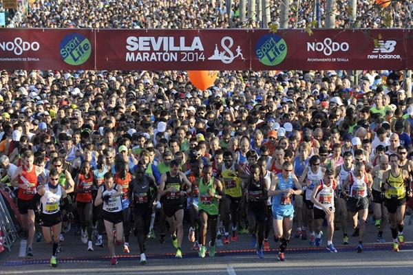 The start of the 2014 Maraton de Sevilla (JJ Ubeda / organisers)