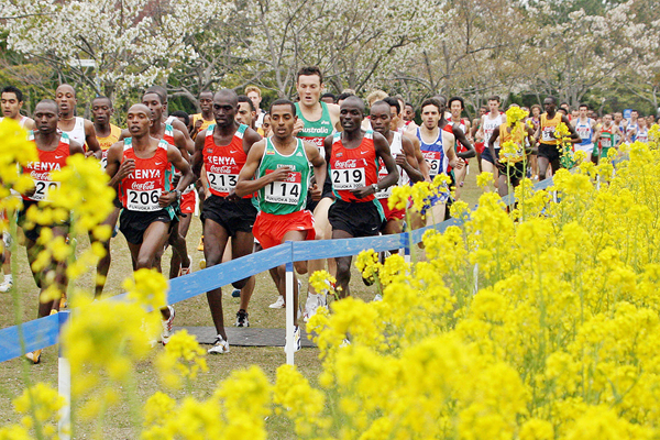 The senior men's race at the 2006 IAAF World Cross Country Championships in Fukuoka (AFP / Getty Images)