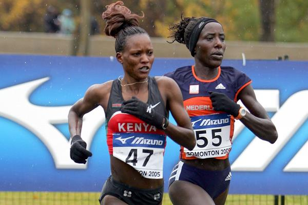 Susan Chepkemei and Lornah Kiplagat in action at the 2005 IAAF World Half Marathon Championships in Edmonton (Getty Images)