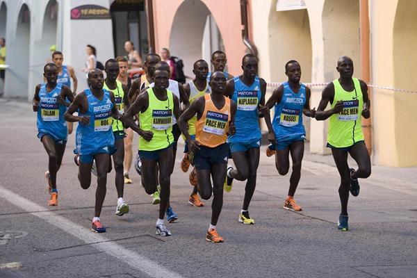 Leaders in the 2014 Ceske Budejovice Half Marathon  (Organisers)