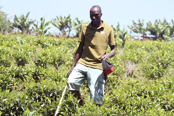 Timothy Cheruiyot on his farm in Singorwet (Dennis Okeyo)