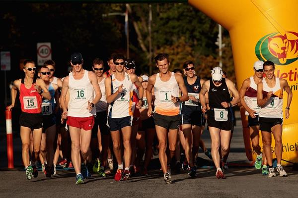 The opening stages of the men's 20km race at the 2014 IAAF Race Walking Challenge meeting in Hobart (Getty Images)